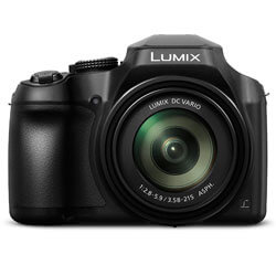 PANASONIC Lumix FZ80, best low light digital camera